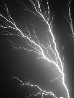 lightning q1