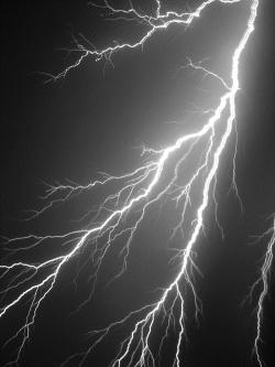 lightning q4